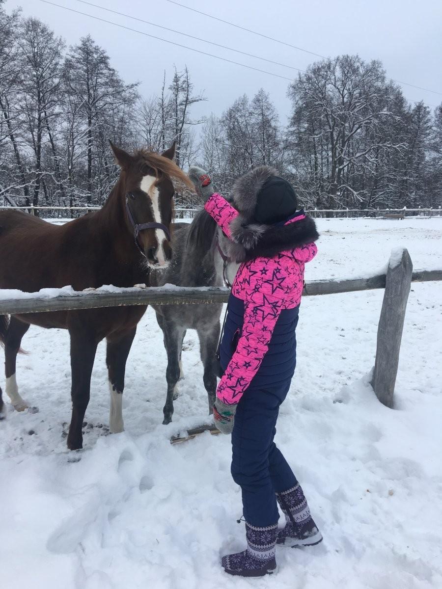 Лукоморье, конно-туристический клуб - №1